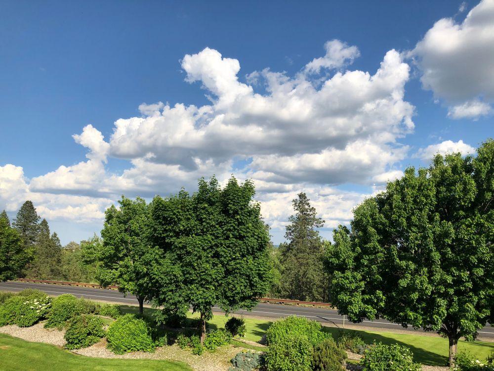 View of Centennial Trail