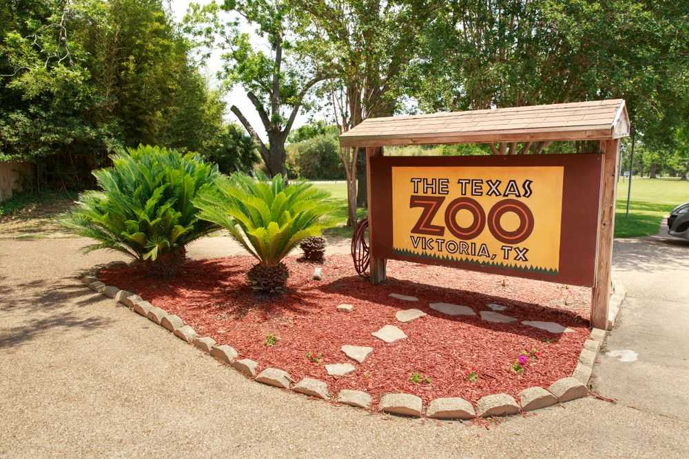 Texas Zoo