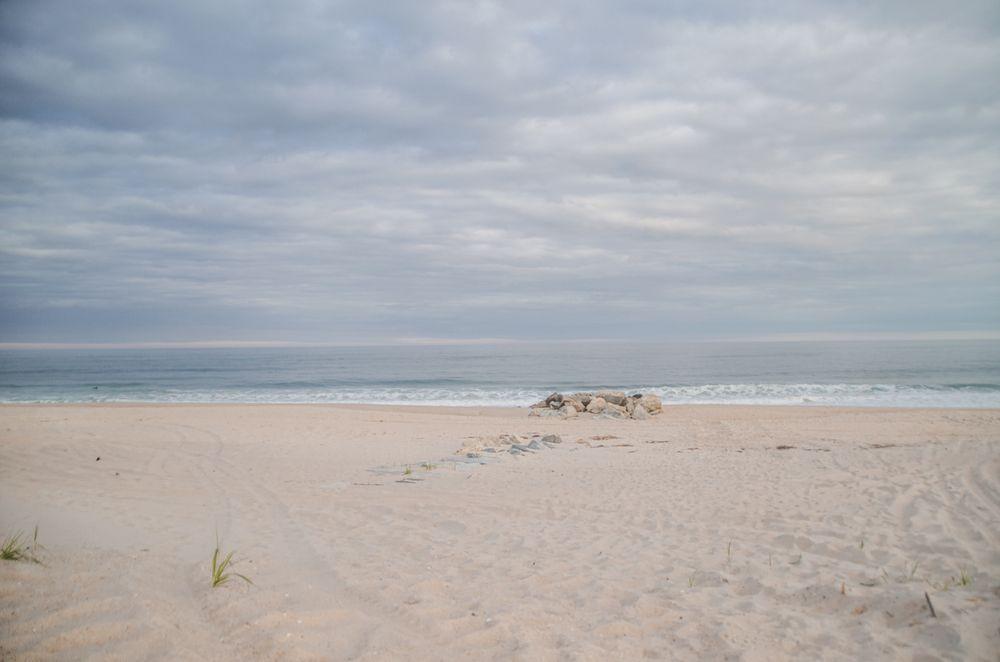 Sand dunes in Hamptons