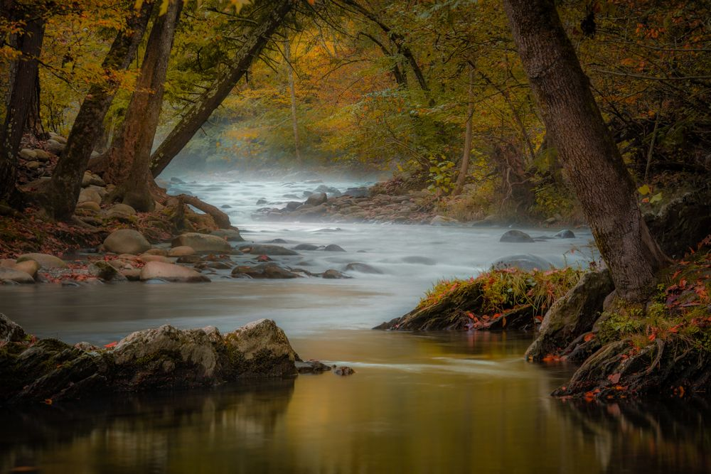 Pigeon River in TN.