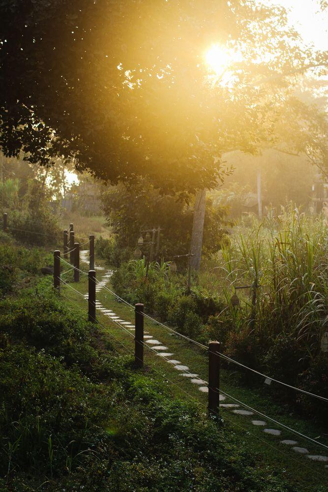 A walkway in Golden Triangle, Chiang Rai