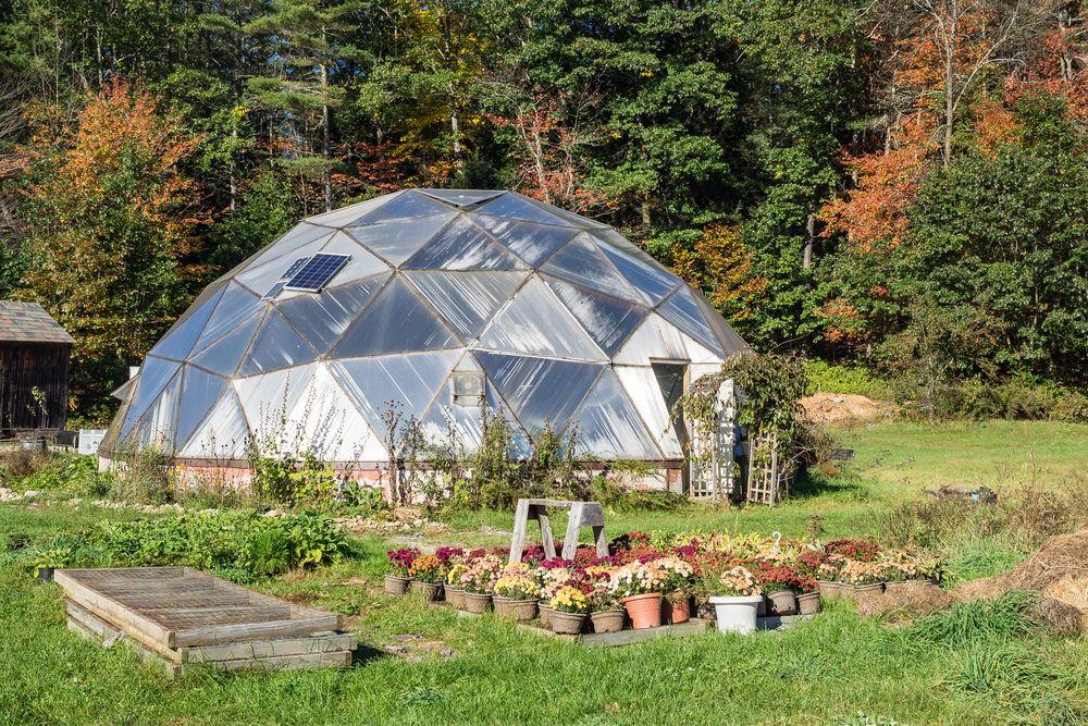 Greenhouse in Stonewall Farm