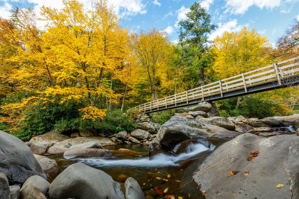 A bridge in Great Smoky Mountains National Park