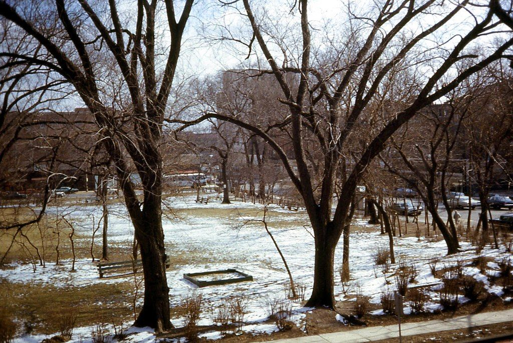 View at Scoville Park