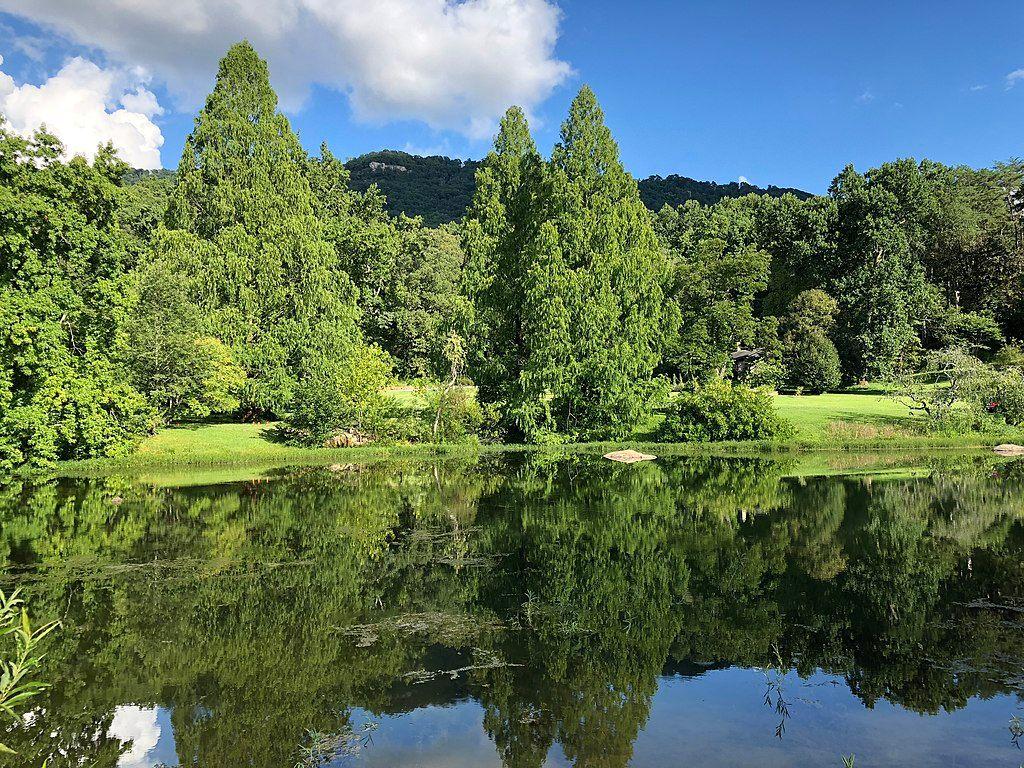 The upper lake at Reflection Riding