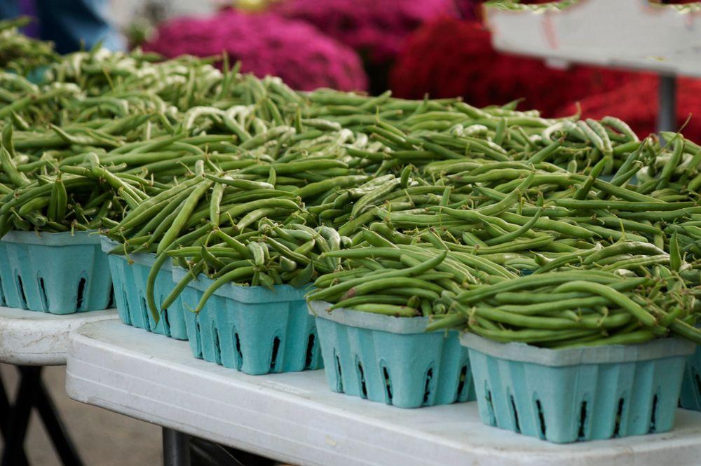 Fresh Beans at Bloomington Farmer's Market