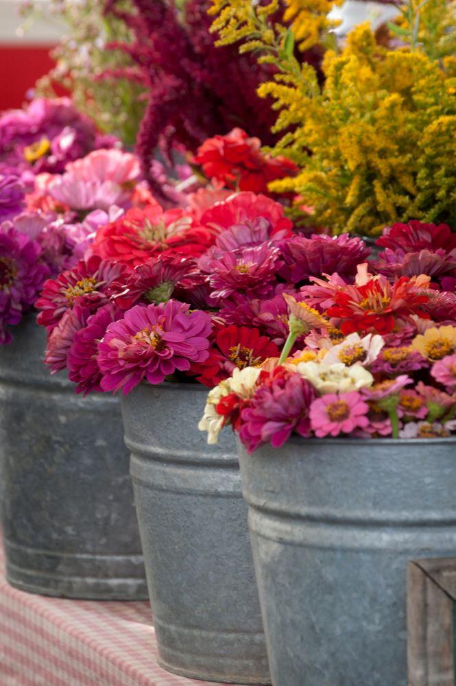 Fresh flowers at Bloomington Farmer's Market