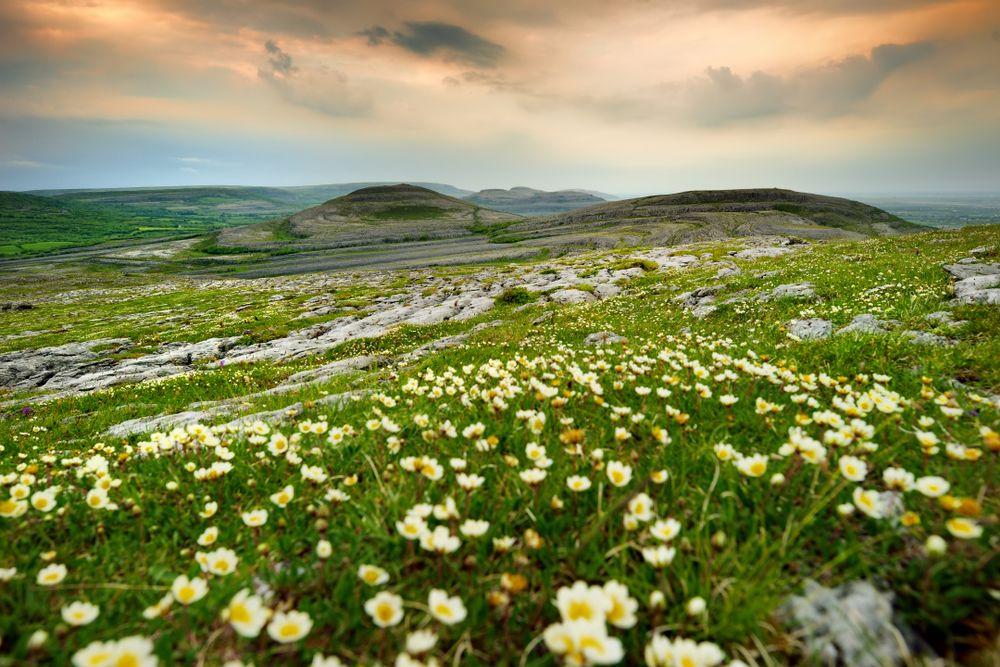 Landscape of Burren Natural Park