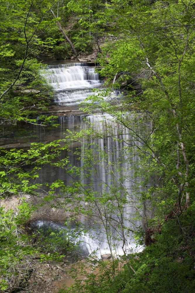 Waterfall in Clifty Falls State Park