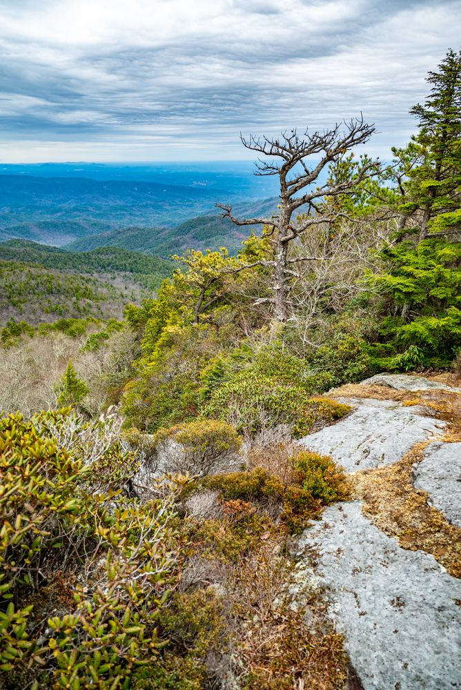 View from Hawksbill Mountain