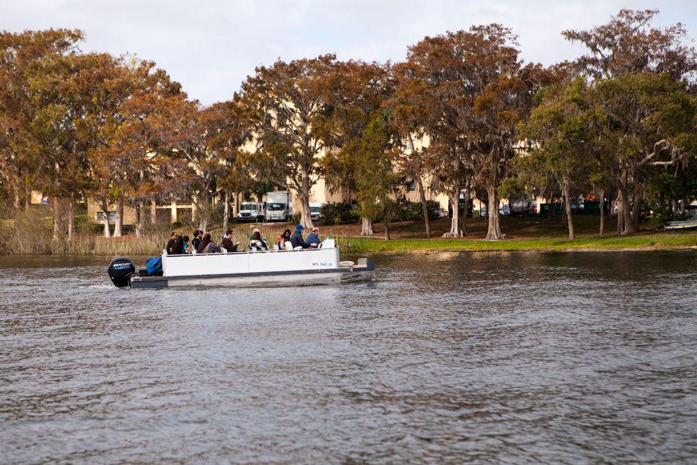 Scenic boat tours in Lake Virginia