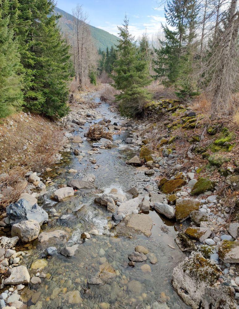 Creek in Okanogan-Wenatchee National Forest