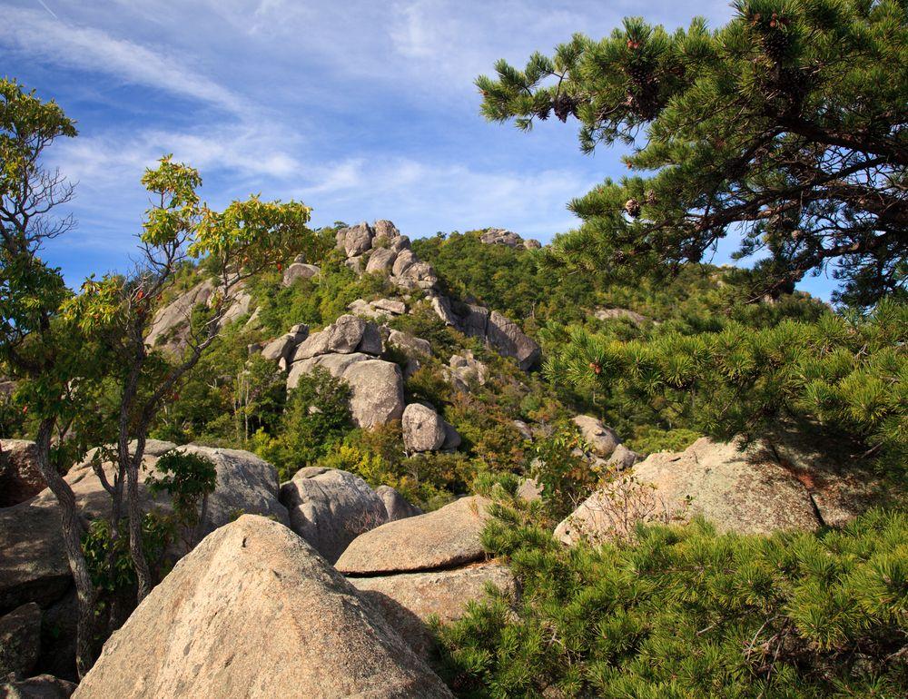 Rocks in Old Rag Mountain
