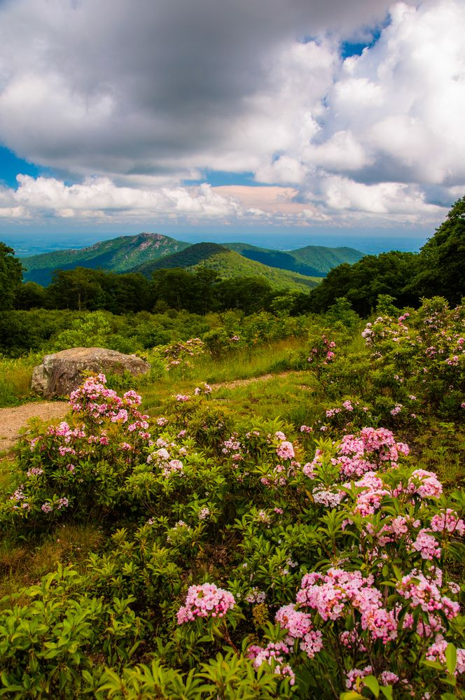 View of Old Rag Mountain