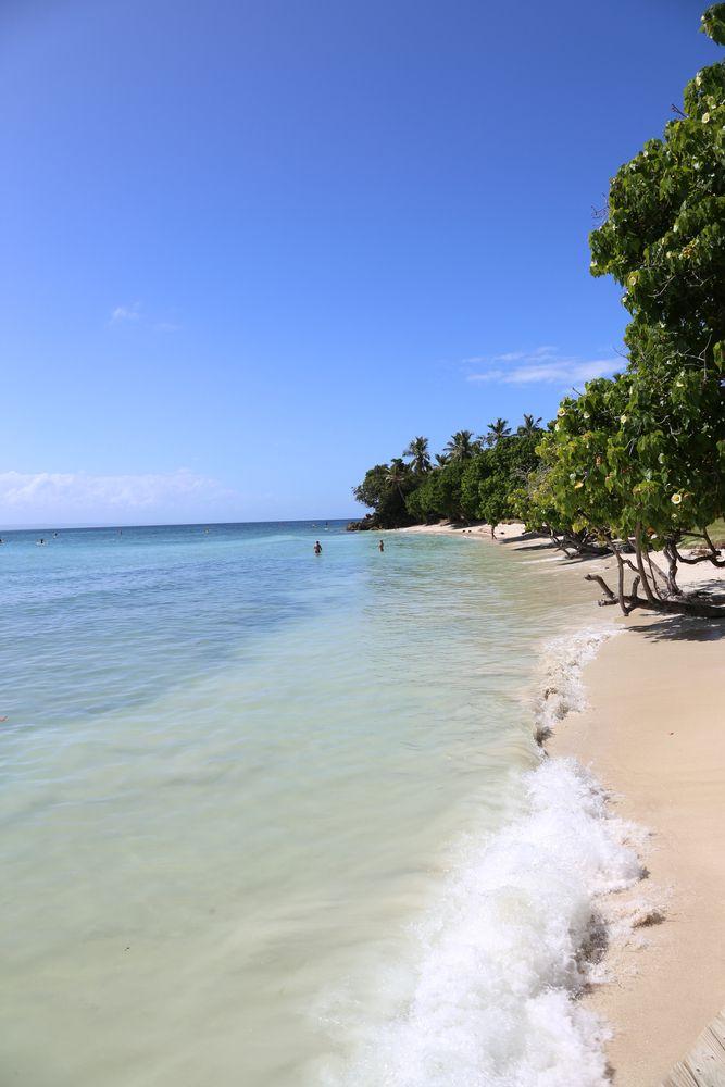 Samana Bacardi Island