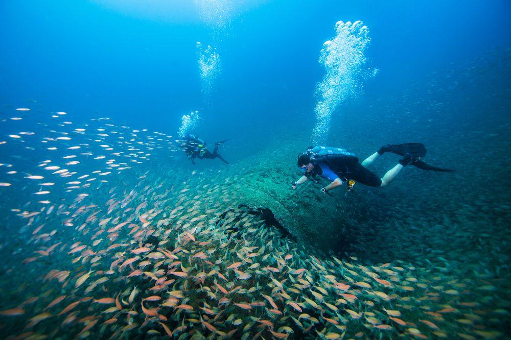 Scuba diving in Beaufort