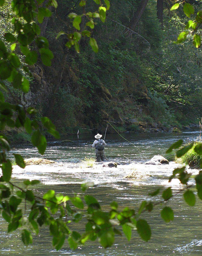 Fishing in Susan Creek Campground