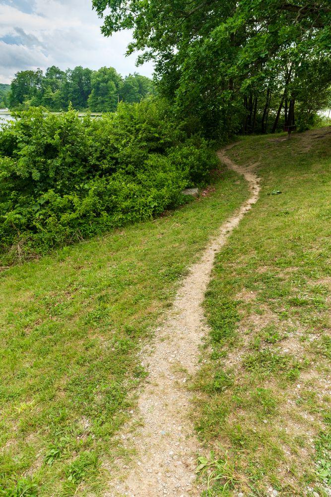 Trail at Wawayanda State Park