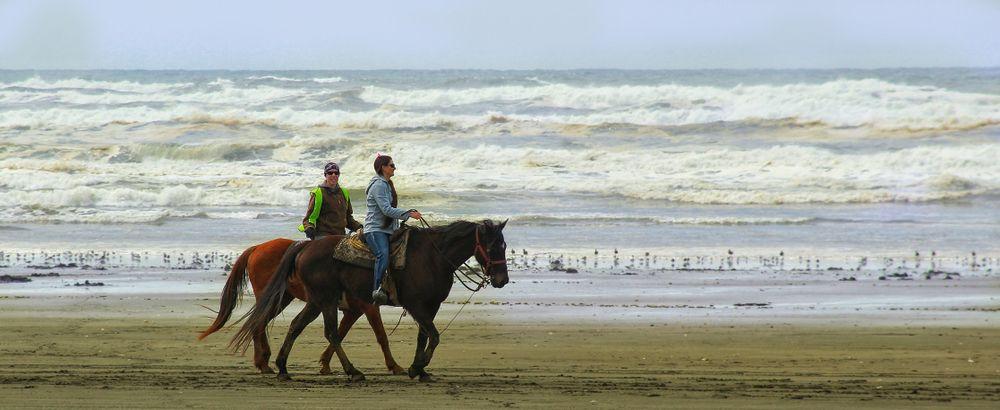 Horseback Riding Near the Sea