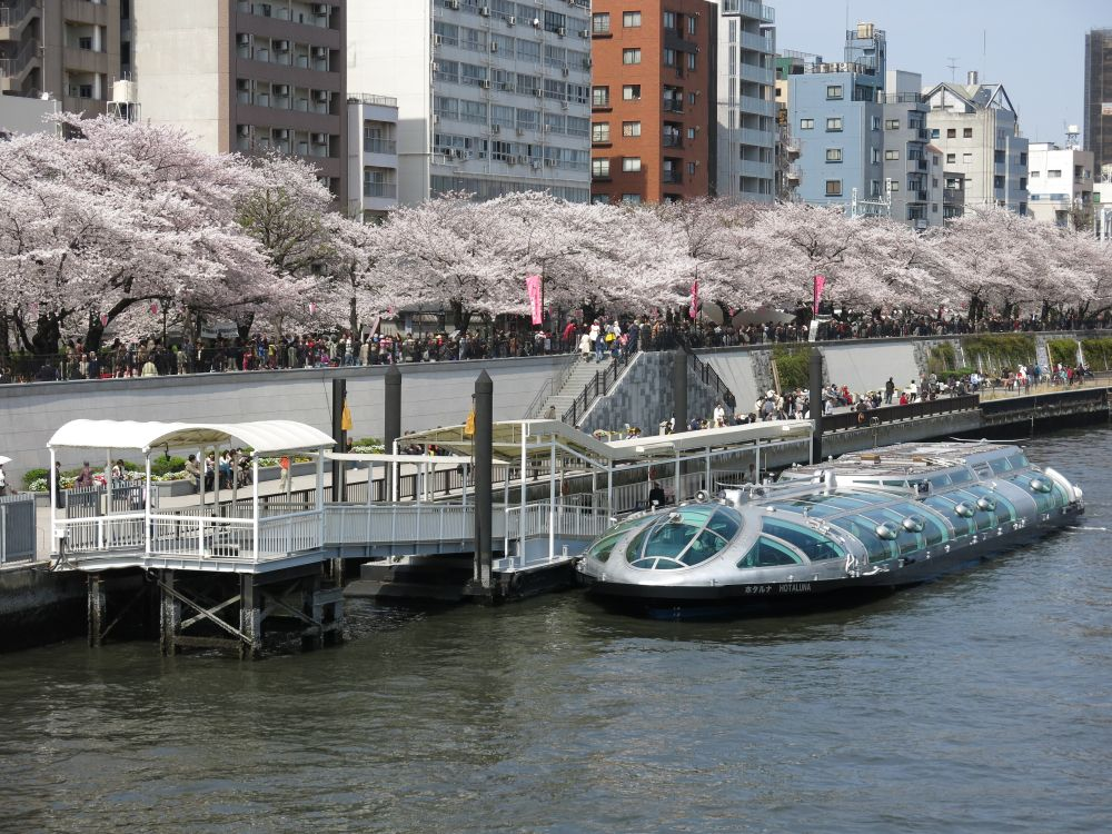 View of Sumida River Cruise