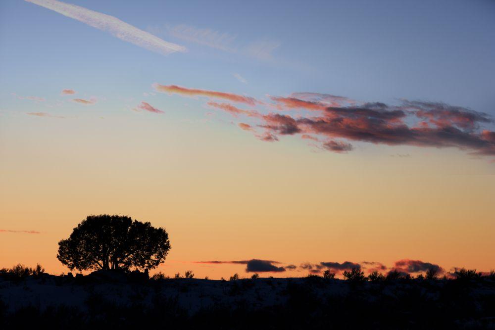 Sunset in Beaver Dick Park