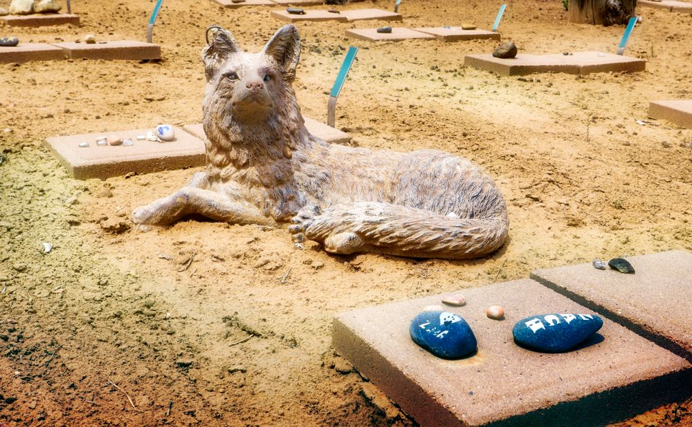 A Animal cementery at Best Friends Animal Sanctuary