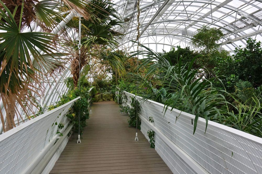 Inside the beatiful Botanical Gardens