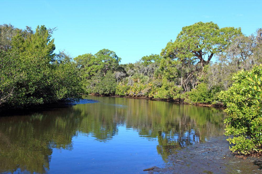 Lake in Charlotte Harbor Preserve State Park