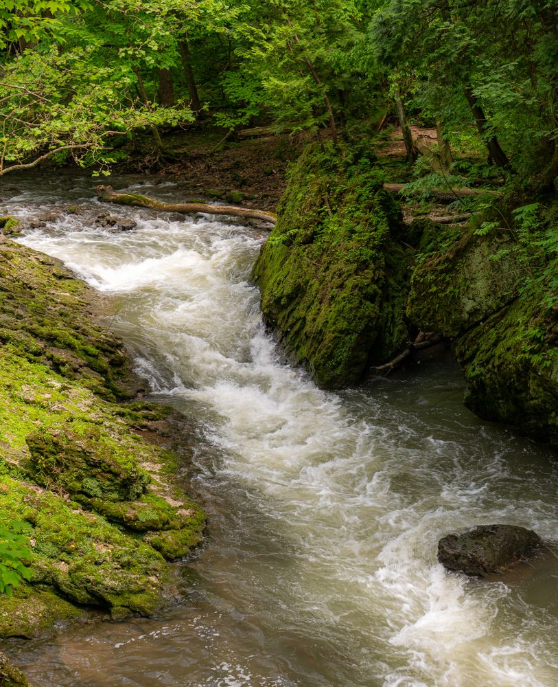 A River in Clifton Gorge State Nature Preserve
