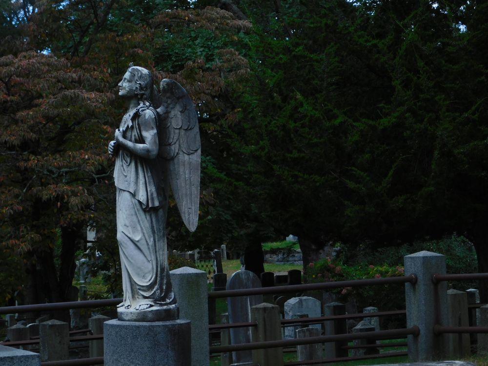 Angel in Sleepy Hollow Cemetery