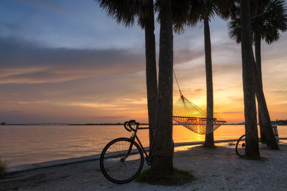 A Bike Leaning Against a Tree in Siesta Keys, FL