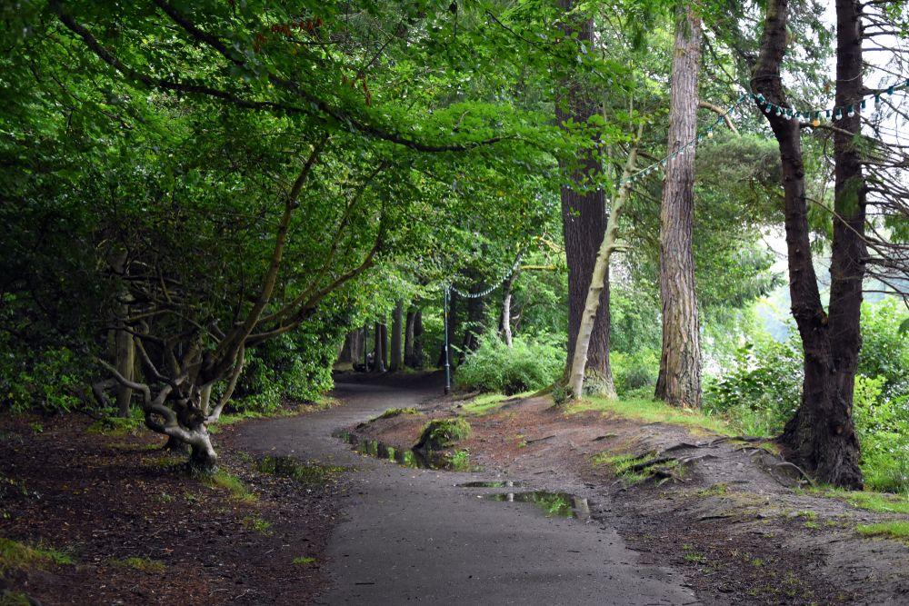 Ness Islands Walk in Inverness