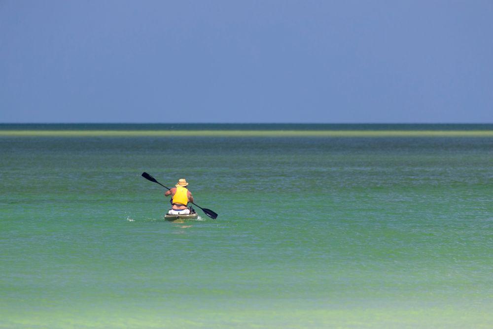 Kayaking in Siesta Key beach