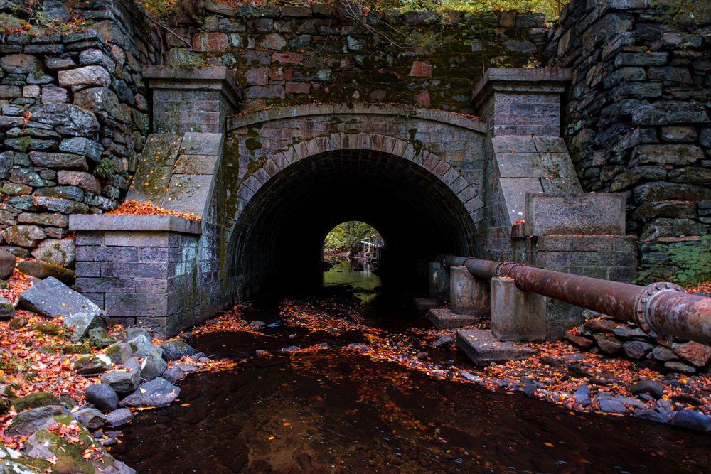 A Tunnel Rockefeller State Park