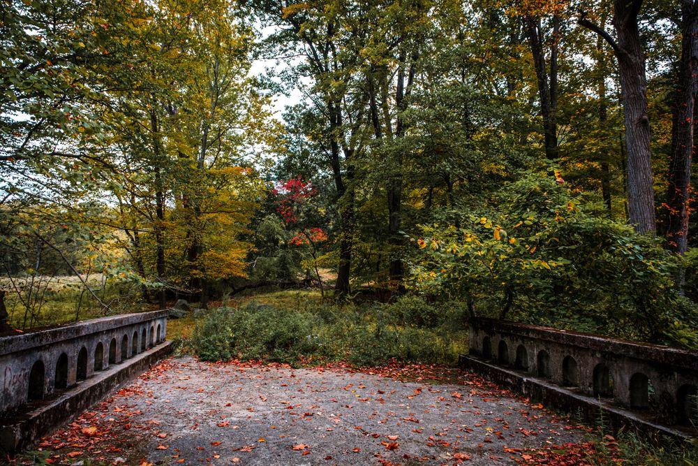 The Beauty of Rockefeller State Park Preserve