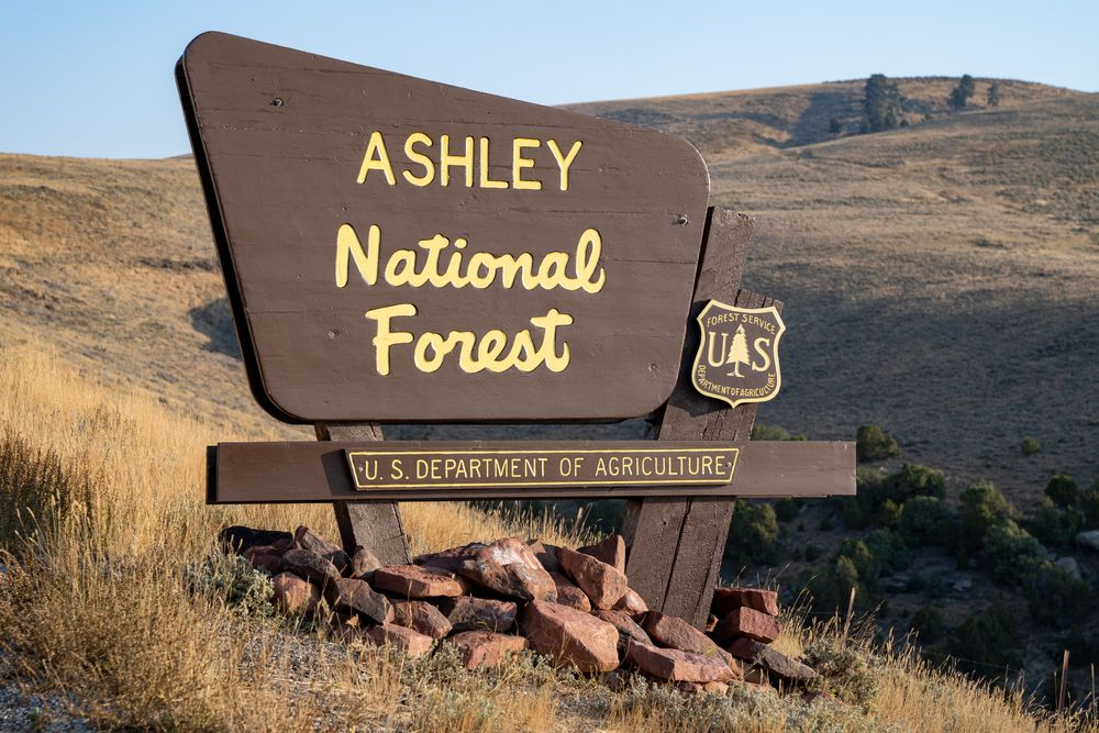 Sign for the Ashley National Forest