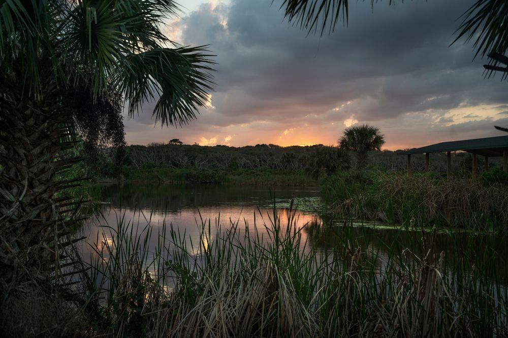The Sun Sets in River to Sea Preserve