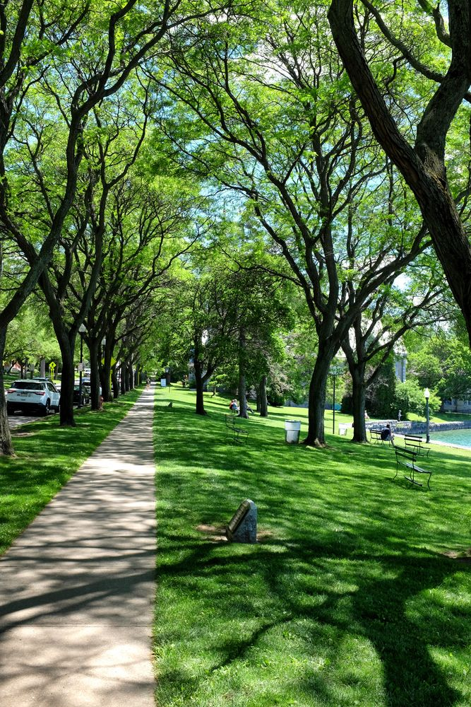 View of Thayer Park