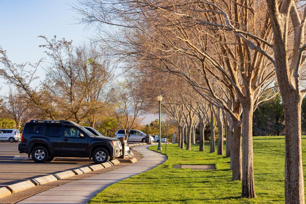 View of Veterans' Memorial Park