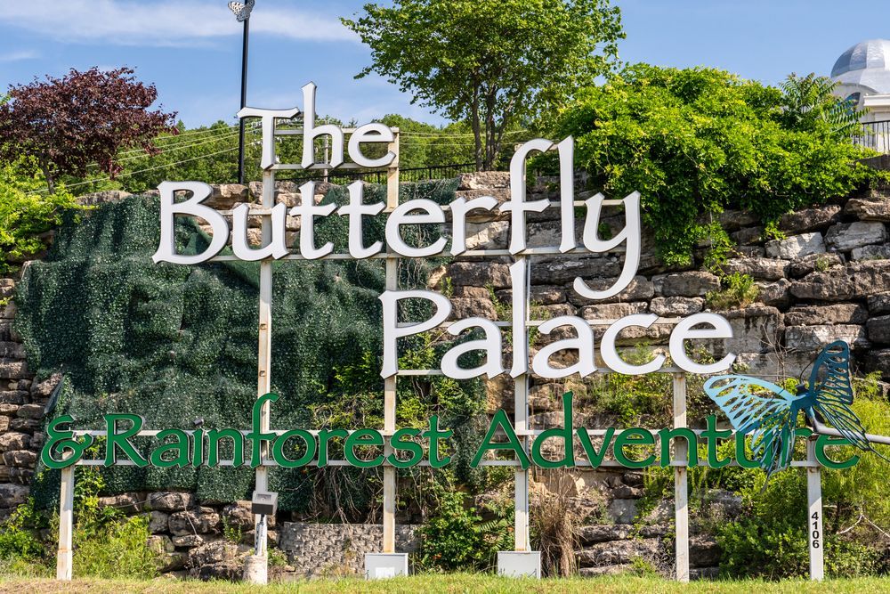 Butterfly Palace & Rainforest Adventure in Branson, MO