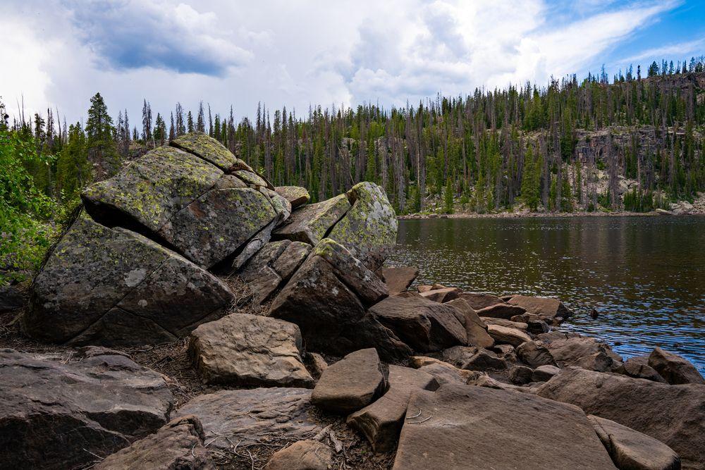 Ashley National Forest, Utah