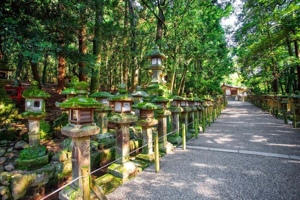 Lantern Stones in Kasugayama Primeval Forest