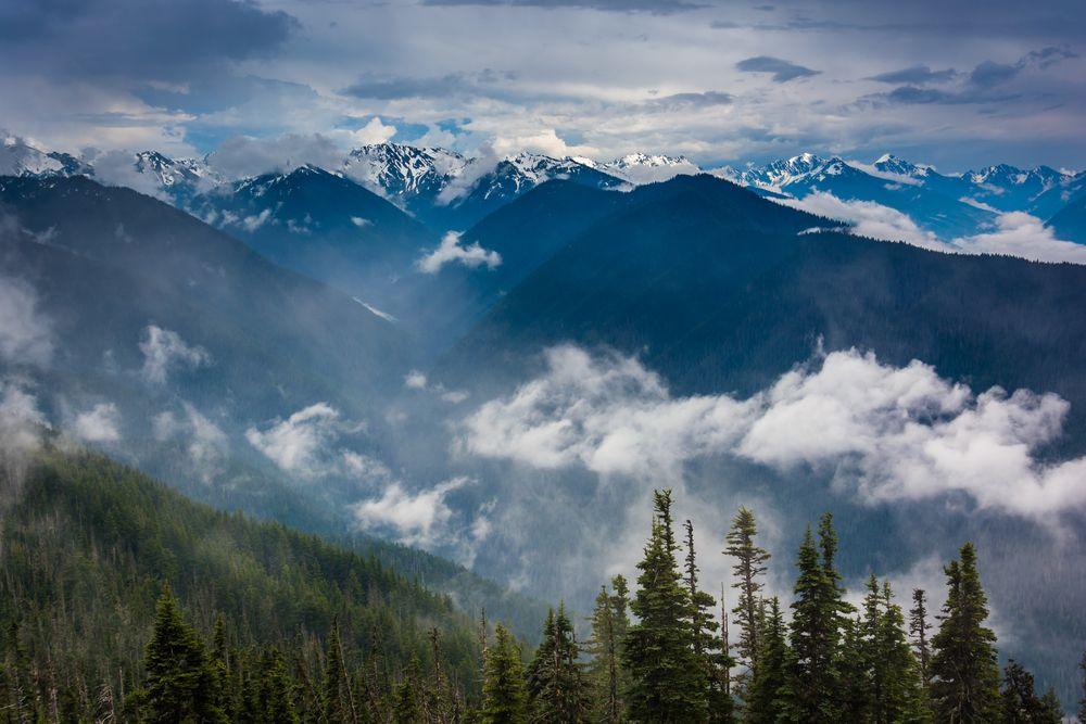 urricane Ridge in Olympic National Park
