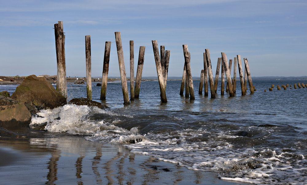 Old dock pilings in Damon Point in Ocean Shores