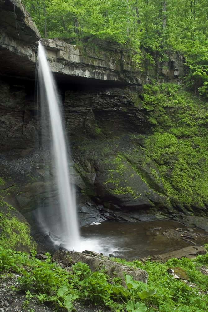 View of Carpenter Falls