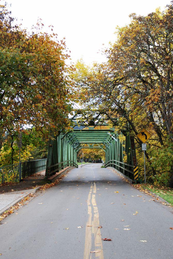 Bridge in Stewart Park