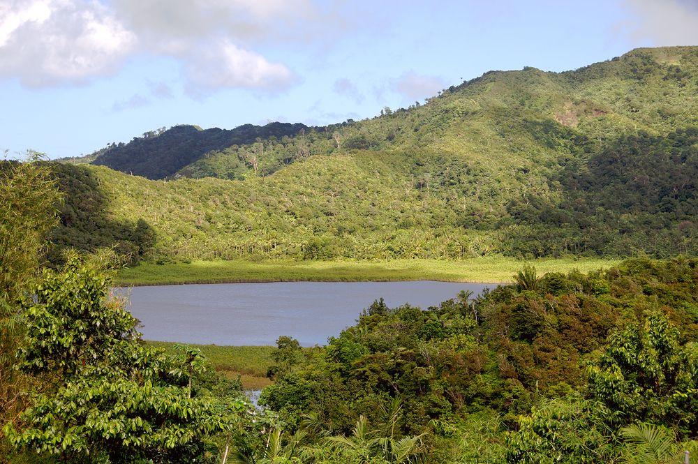 View of Grand Etang National Park