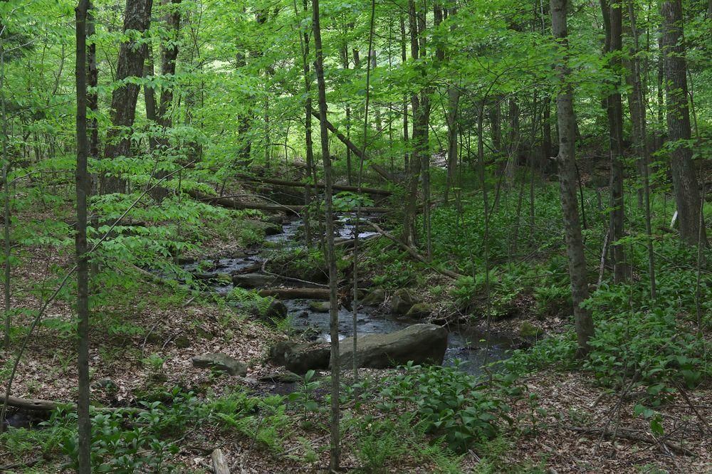 View of Pleasant Valley Sanctuary