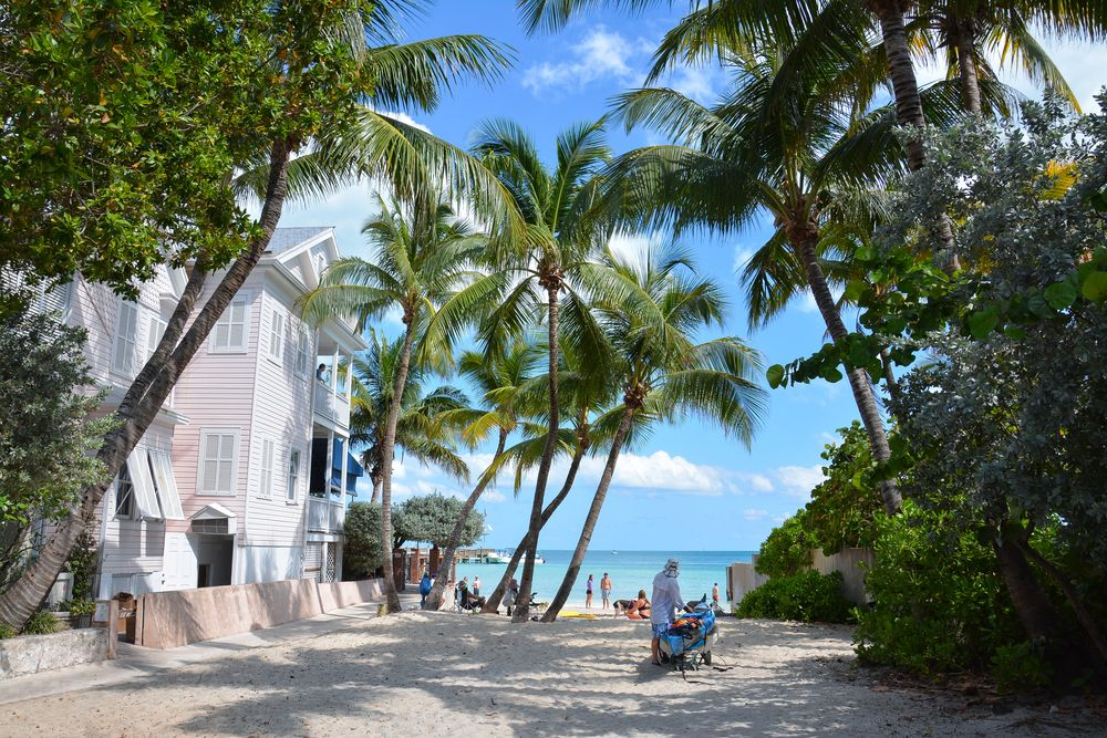 People in in Dog Beach, Key West