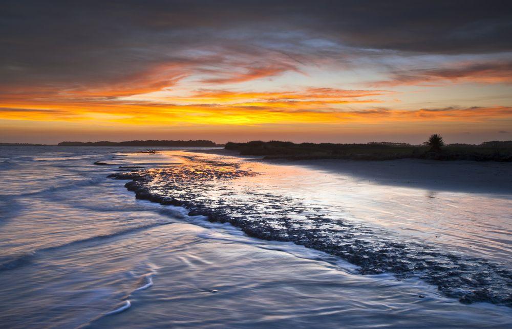 Waves in Folly Beach